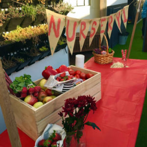 Timber crate filled with fruits and vegetable on top of a table with a bright red tablecloth